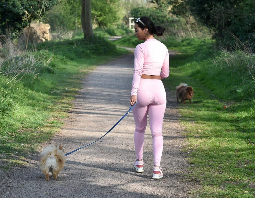 Yazmin Oukhellou Takes Her Dogs For a Walk in Essex (11 Photos)