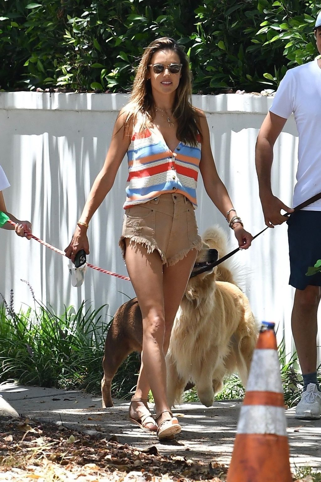 Leggy Alessandra Ambrosio Takes the Dog for a Walk with Her Daughter (85 Photos)
