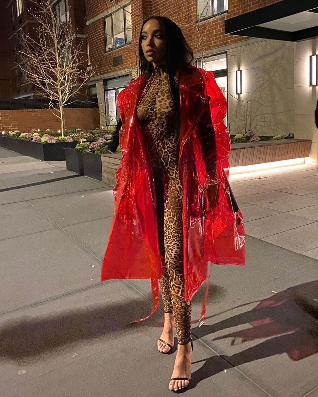 Tinashe See-Through