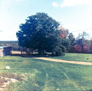 1964 - The ski lodge on the left