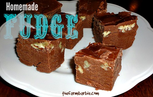 Homemade Fudge Without Carnation Evaporated Milk