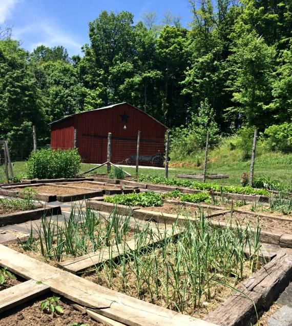 garden may 13