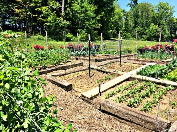 may garden 14