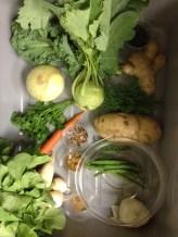 Food Identification Survey