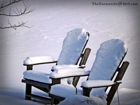 adirondak chairs in snow - TheFarmersInTheDell.com