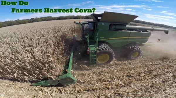 How Do Farmers Harvest Corn The Farmer S Life