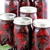 Canned Plum Juice Recipe