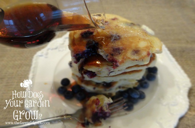 Blueberry Pancakes with Syrup