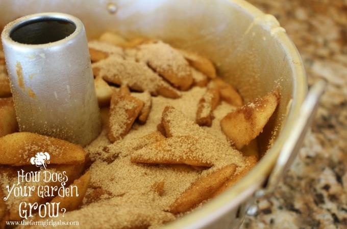 Apple Cake In Pan