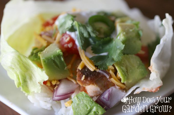 Mexican Lettuce Wraps - Feature 1