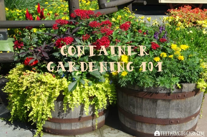 Container Gardening 101: Tips And Tricks To Grow The Most
