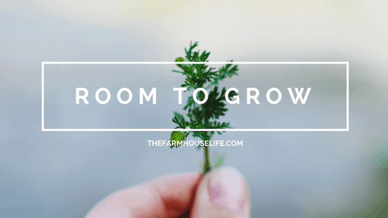 Holding a small sprig of plant with the words Room To Grow.