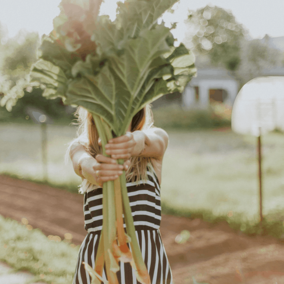 Woman holding rhubarb stems.