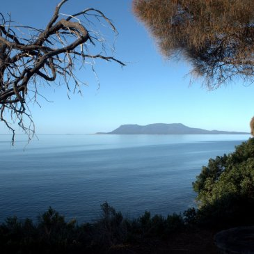 Maria Island from Orford - photo by Andrew Ross www.novisiblemeans.com