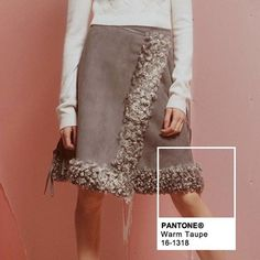 Warm Taupe - Image Via Pinterest Pantone Color