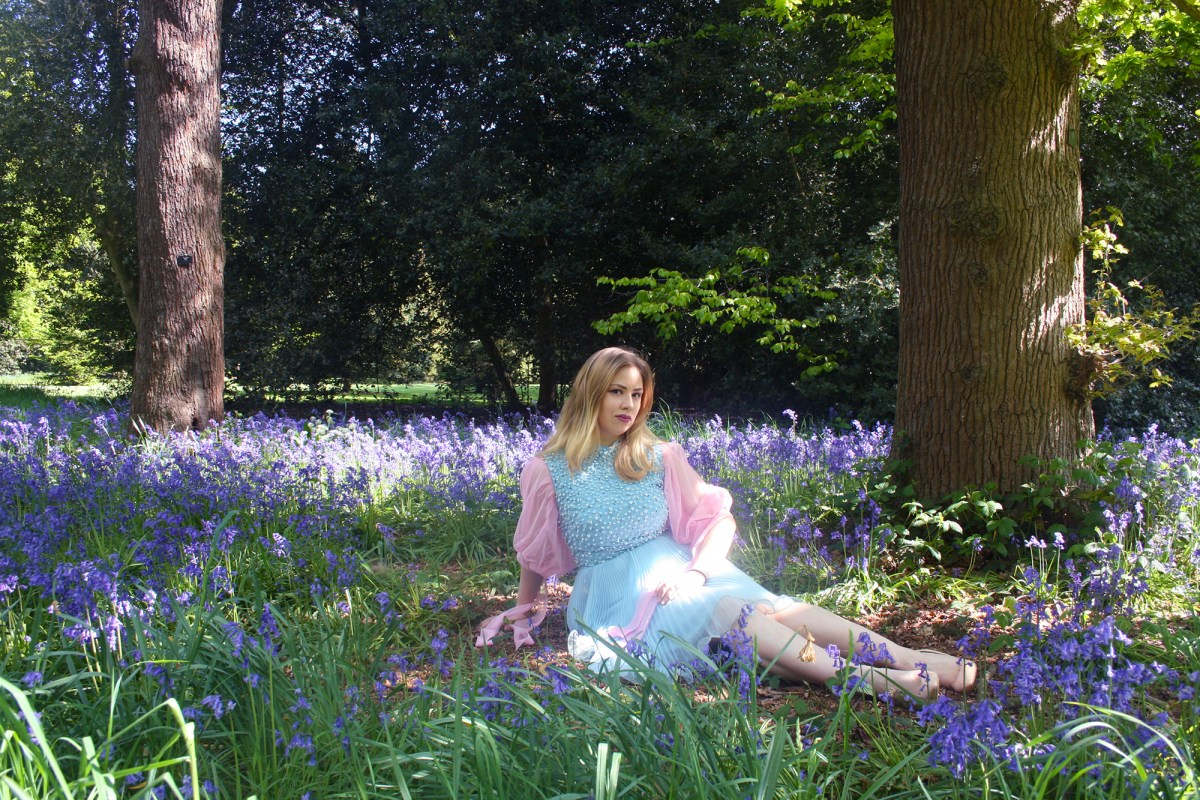 The Shoot: Bluebell Meadow