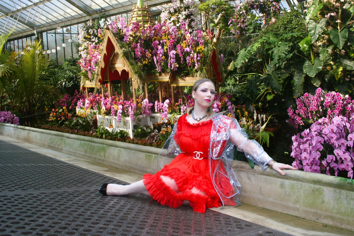 The Shoot: Thai Orchid Festival