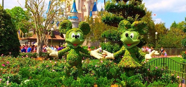 The Ultimate Disney Travel Guide
