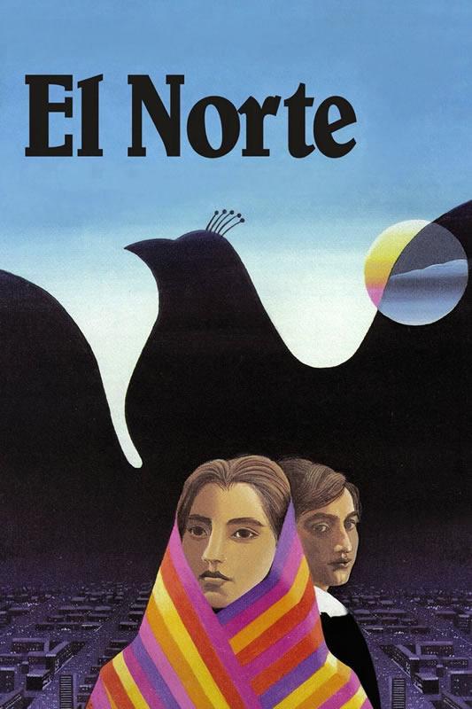 elnorte800