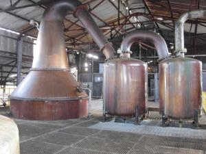 Gargano Rum Classification Article by the fat rum pirate Hampden Still