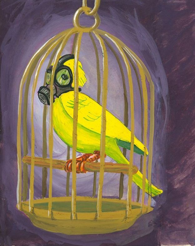 The Canary as Leader