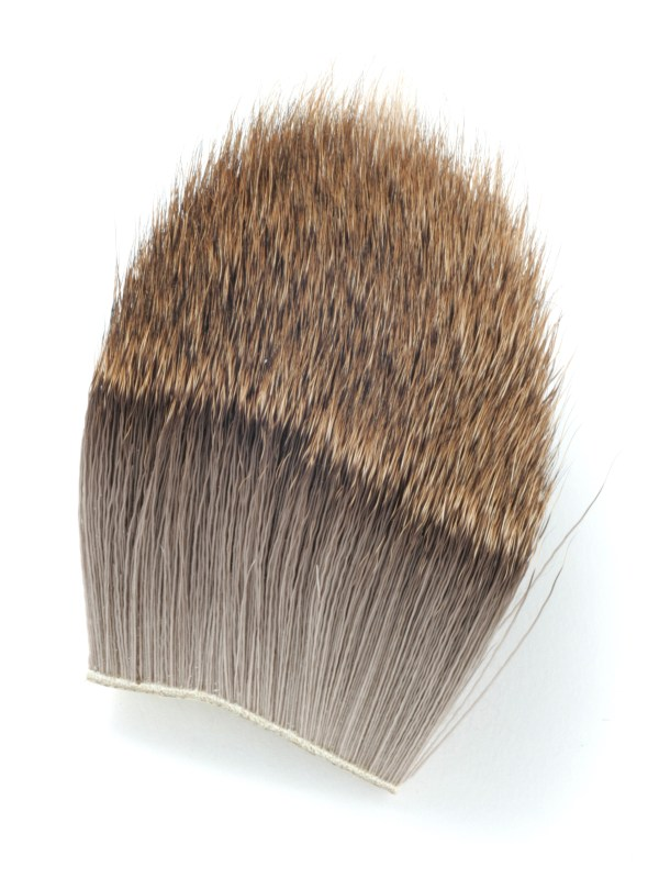 The winter coat of the European roe with its dense hair is ideal for spinning.