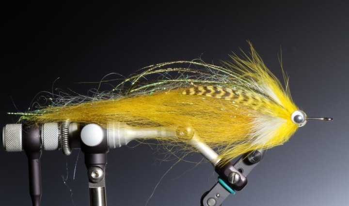 Streamer fly for Autumn Pike