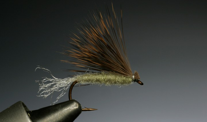 X Caddis tied by Barry Ord Clarke