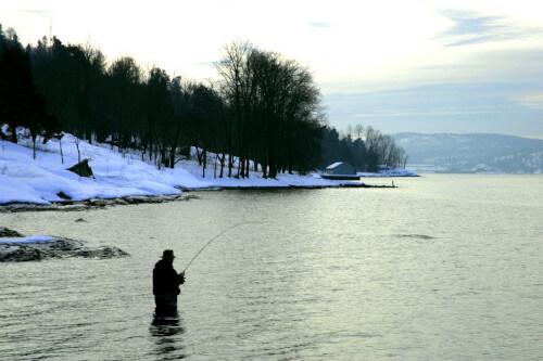 winter-sea-trout