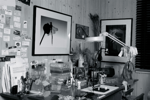Barry Ord Clarke tying room