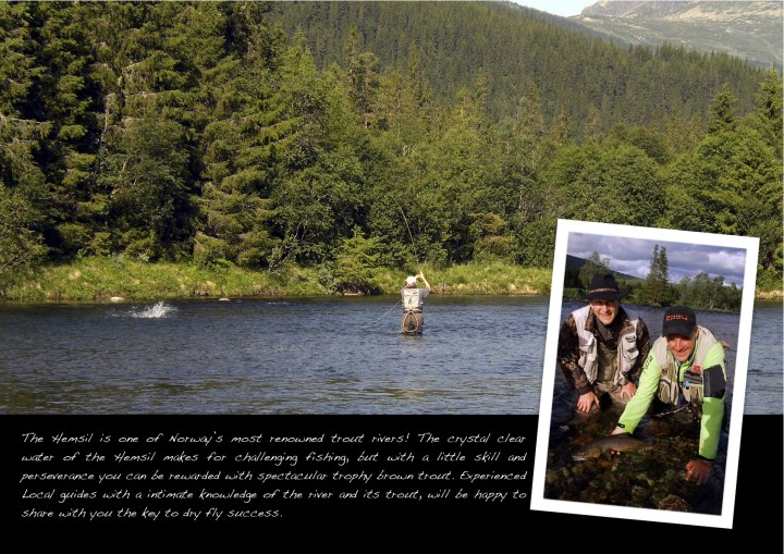 Gamefish page 6 Hemsil