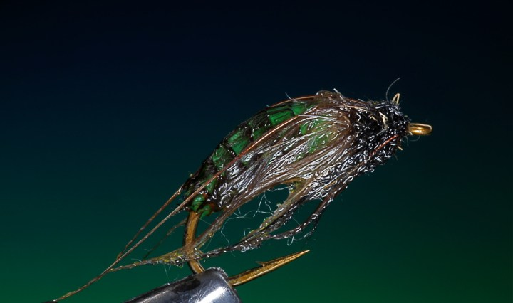 Melt glue caddis pupa tied by Barry Ord Clarke