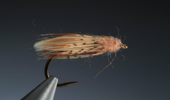 fly tying diving or egg laying caddis