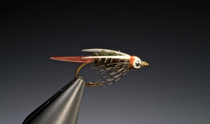 Prince nymph fly tied byBarry Ord Clarke