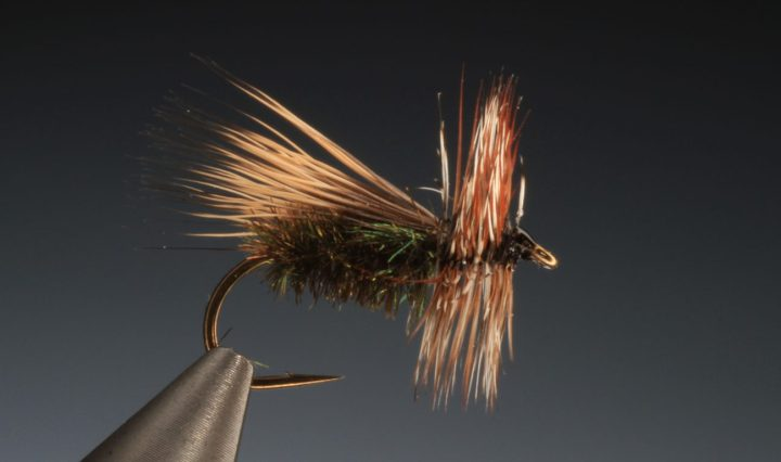 peacock elk hair caddis tied by Barry Ord Clarke