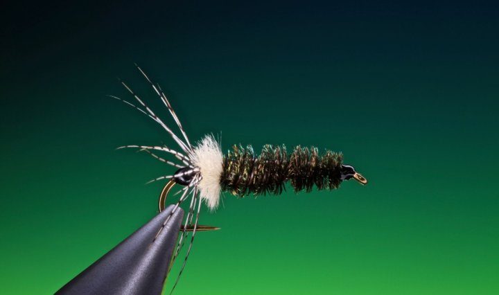 fly tying House builder caddis larvae