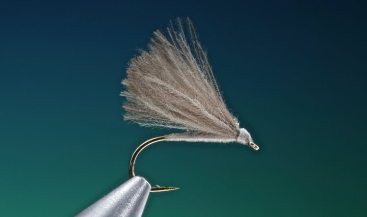 F fly tied by Barry Ord Clarke