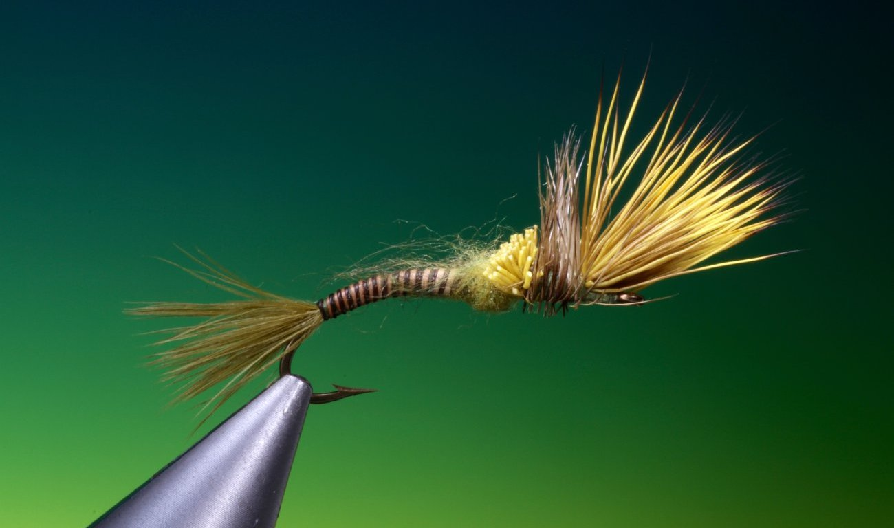 Cripple green drake pattern tied by Barry Ord Clarke