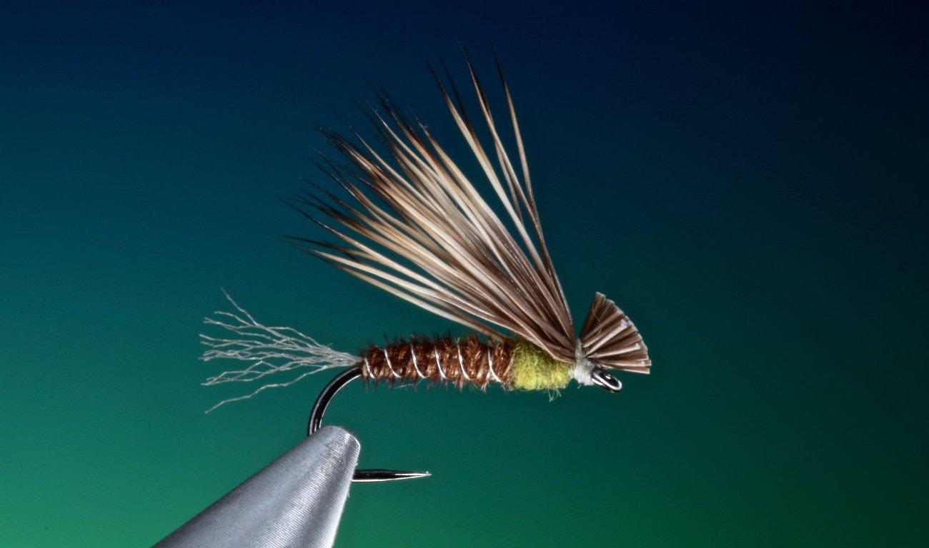 fly tying Pheasant tail X-Caddis