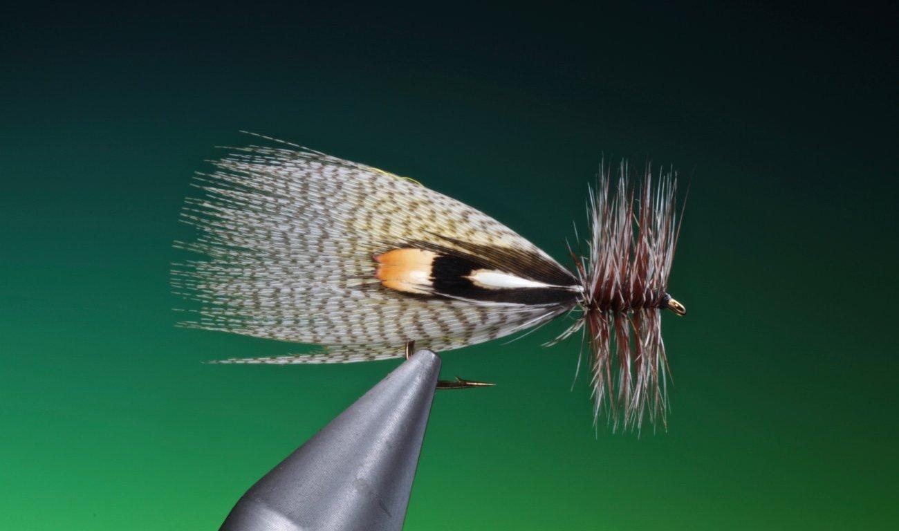 fly tying Hornberg dry fly