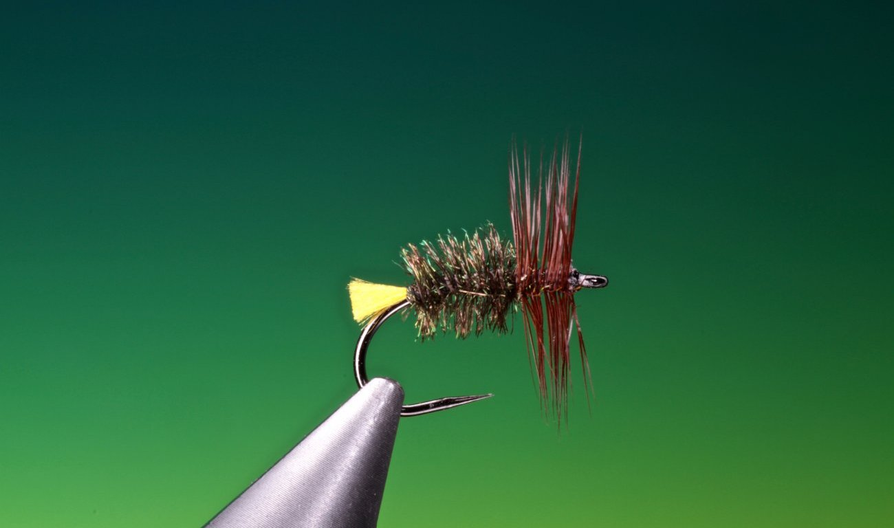 fly tying Treacle Parkin dry fly