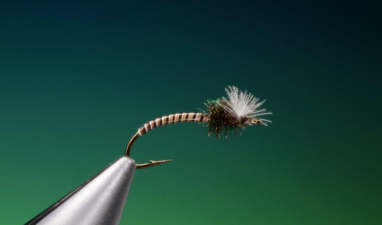 fly tying Moose quill midge larvae