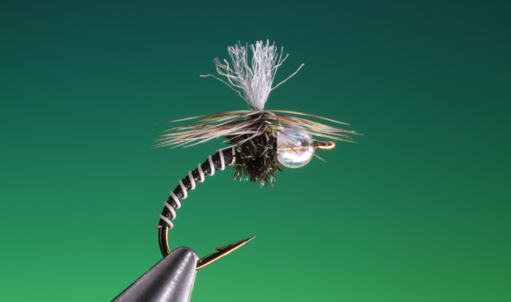 Grey with Clear bead sz 24 Zebra  Midge Emerger  Fly HOT PATTERN