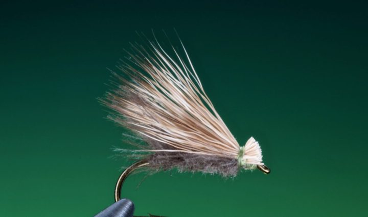 cdc and elk hair caddis tied by Barry Ord Clarke