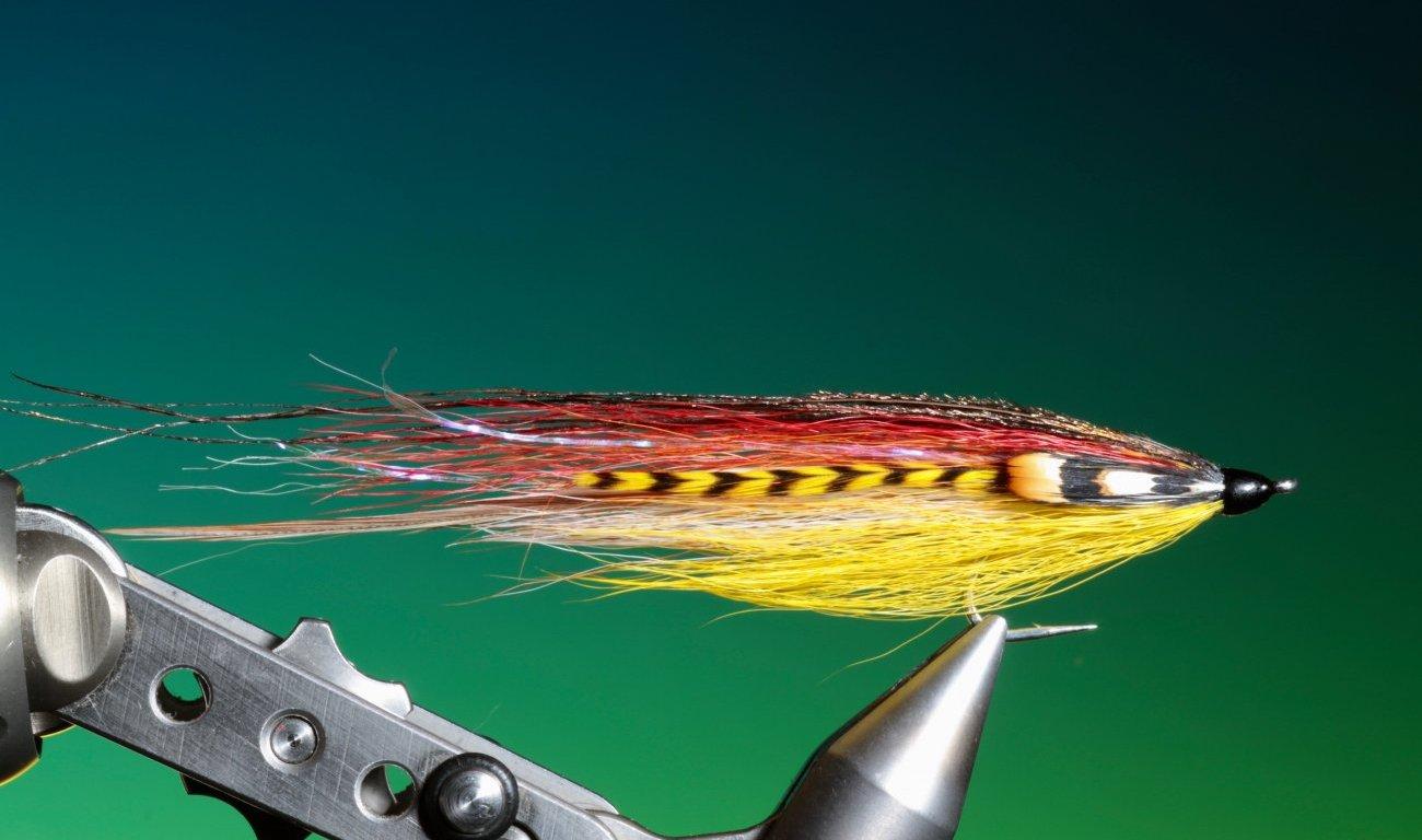 Sunrise flatwing streamer tied by Barry Ord Clarke