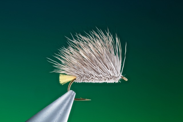 fly tying Egg laying caddis dry fly