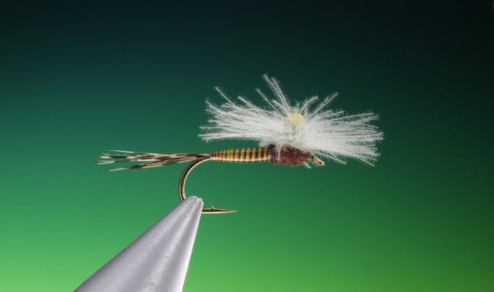 fly tying CDC Para weld