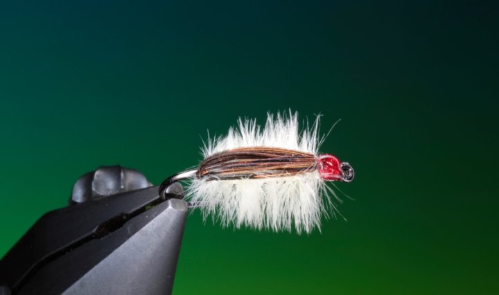 fly tying Chocolate & Vanilla Chomper nymph
