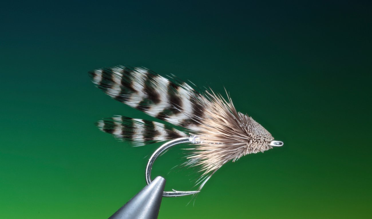 fly tying Grizzly Muddler streamer