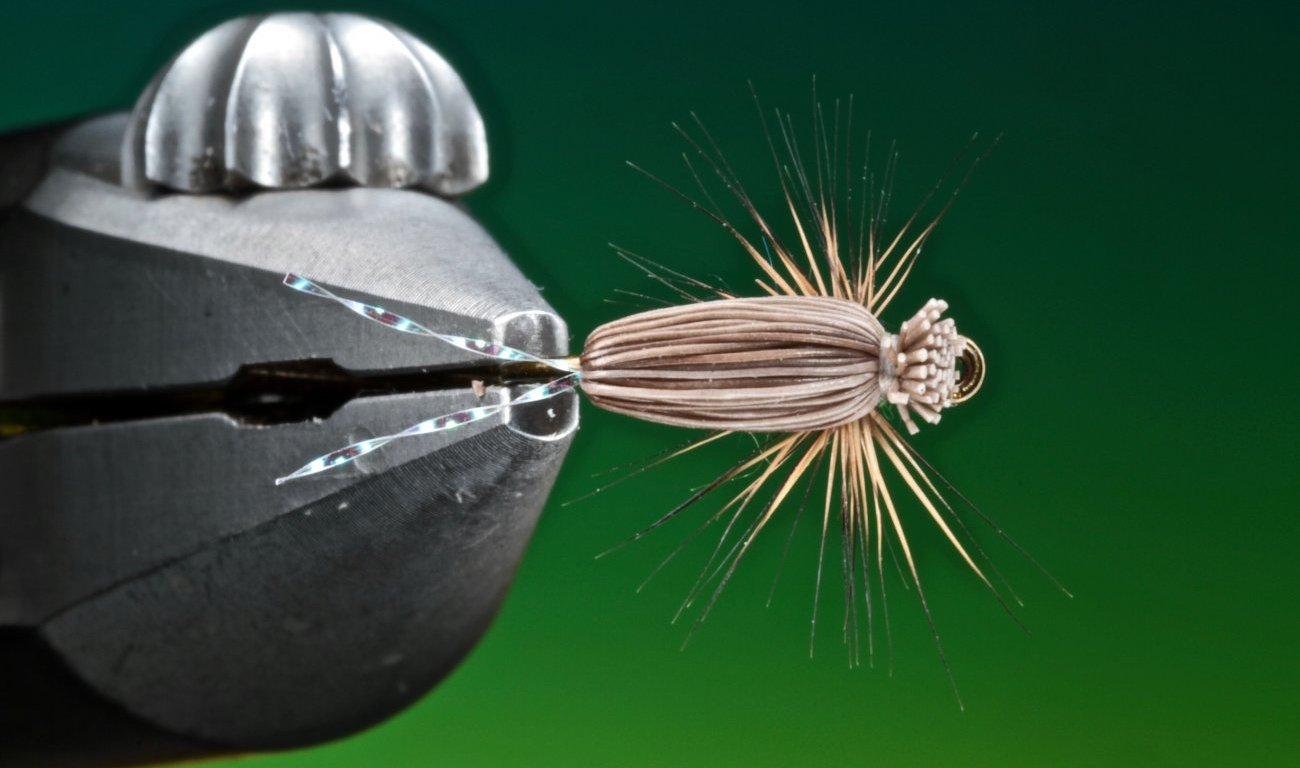 Clarkes All Purpose Emerger tied by Barry Ord Clarke
